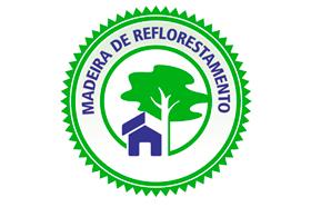 Móveis com Madeiras de Reflorestamento